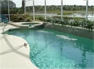 Large private pool/hot tub area looks over wildlife pond/area