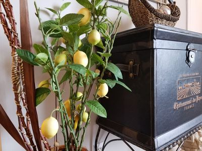 Photo for Lemon Tree Entire Home