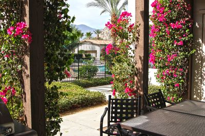 Private patio with electric BBQ overlooks main pool area.
