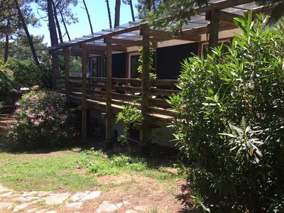 Photo for Villa in the pine forest, near the beach of Americans