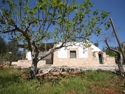 Photo for trullo surrounded by greenery