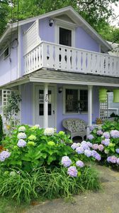 Photo for Sweetheart location in downtown Oak Bluffs, short walk to town&beach