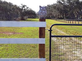 Photo for 3BR Farmhouse Vacation Rental in Frostproof, Florida