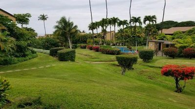 Beautiful Garden, Pool  & Ocean Views from Extra Large Lanai
