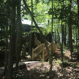 Photo for Hiker's Haven! A Pet and family friendly cozy cabin at Misty Mountain Inn