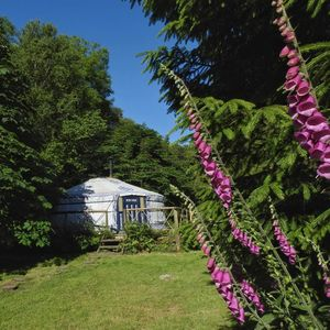Photo for Mongolian yurt in idyllic and totally private setting on Dartmoor