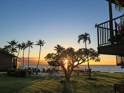 Photo for Polynesian Shores 109- Steps from the pool and the ocean!
