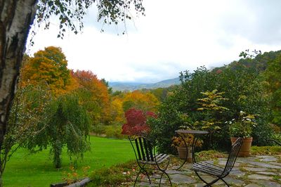 Fall view from front patio of house.