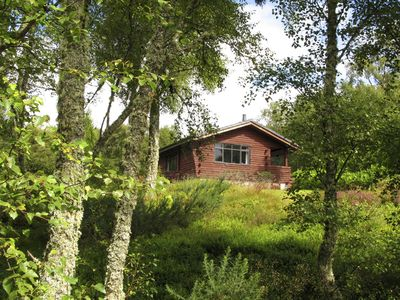 Photo for Unique, Solo Log Cabin In Private Woodland With Views To Sea And Local Hills