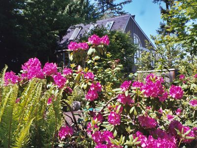 Photo for Recently Updated Private Guest House Offers Guests A Quiet & Beautiful Getaway!