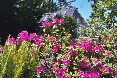 Street view of the Carriage House & the front garden.