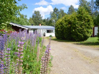 Photo for Older Cottage In Tranquil Village Surrounded By Forest With A Rich Animal Life