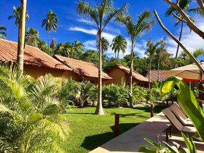 Palm trees and the Bungalows!