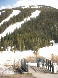 Photo for Exactly, 206 steps to the two quad ski lifts!