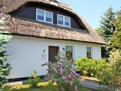 Photo for Holiday thatched - Apartments and rooms in Göhren