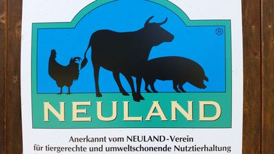 Photo for Full bewirtschaft. Farm animals in Neuland attitude (esp. Artgerecht) ****