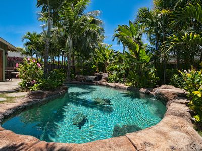 Photo for 1BR House Vacation Rental in Kailua, Hawaii