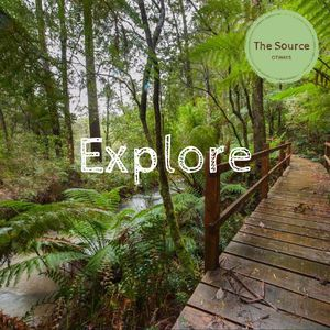beautiful walking tracks to explore this magnificent property