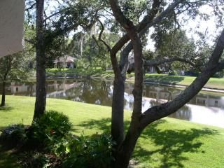 Tarpon Woods Condo with Lake View
