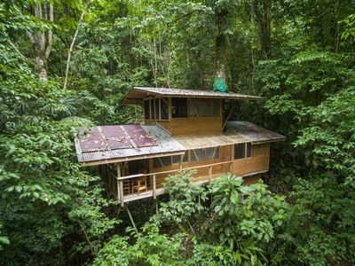 Photo for Treehouse in the Rainforest, Nature Lover's Paradise, Jungle Immersion