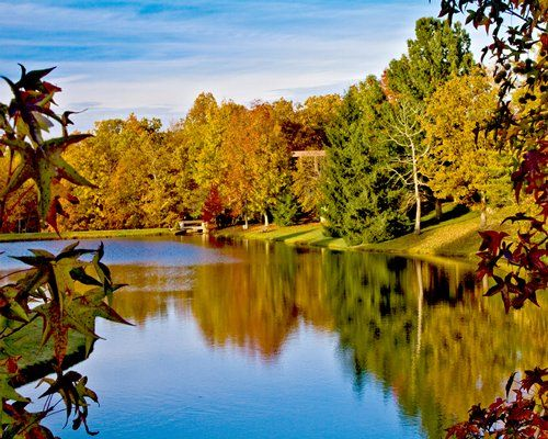 Mirror Lake Stocked With Fish Picture Of Wyndham Resort At