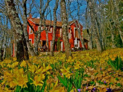 Photo for A magical house in the heart of Guadarrama Park