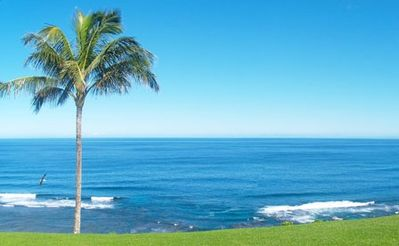 Photo for Sealodge C3 Oceanfront with Unbeatable Ocean Views