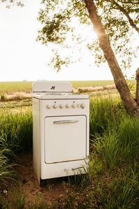 Antique oven along our tree row welcomes visitors to stay awhile.