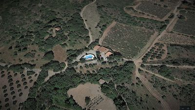 Photo for Languedoc Villa with Pool, Vineyards,Olive Groves and views