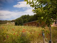 Beautiful location surrounded by wild flowers and with a lovely Eco pool. Charming hostess