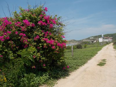 Photo for Remote and Tranquil, Playa Mojon.