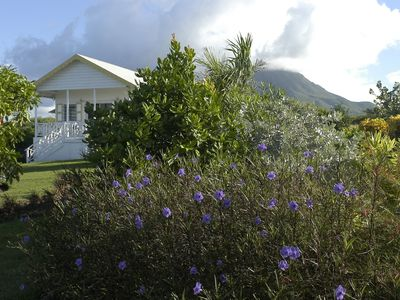 Photo for Black Sand Cove Cottage, in fabulous gardens by the sea