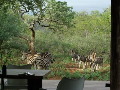 Photo for Exclusive home in wildlife estate near to Kruger Park