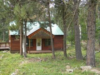 Photo for Year Round Cozy Cabin-Top of Terry Peak- Heart of the Hills- Near Snowmobile Trl