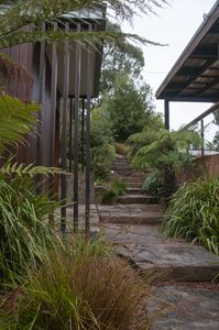 Steps from carport down to entry