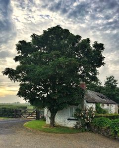 Photo for Traditional Irish Barn in Beautiful and Tranquil Countryside