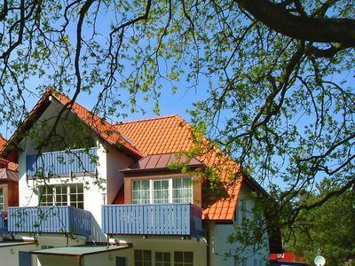 Photo for cozy apartment with south-facing balcony directly on the Darßer forest