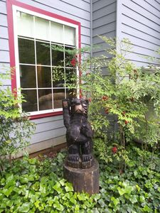Greeted by bear