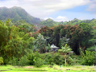 Nestled in the lush Wainiha River Valley, your private piece of paradise.