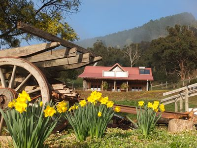 Photo for Redgum Cabin Nestled into Mountains