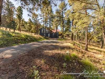 Photo for 'Turning dreams into Memories' Luxury Home, wildlife daily