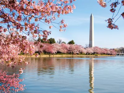 Photo for ★★★★★ Great location & Easy Tour, Downtown DC★★★★★