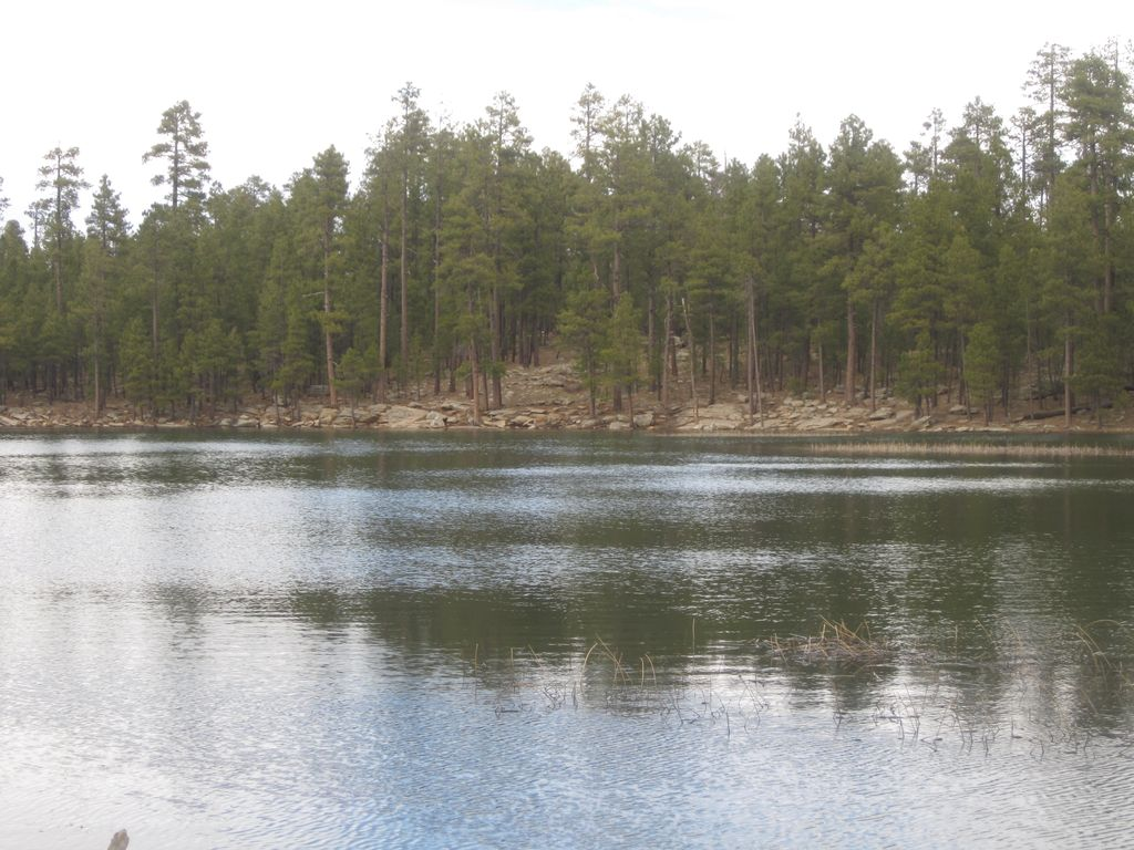 Beautiful Cabin for Rent in Forest Lakes, Arizona, Forest Lakes, Arizona | RentByOwner.com ...