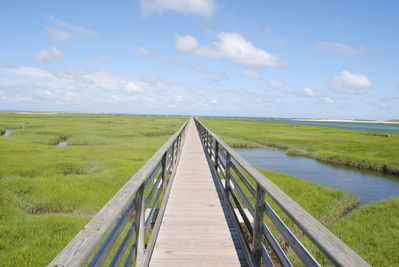 The boardwalk at Grey's beach - a short .9 mile walk/ride from the house.