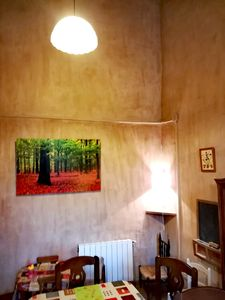 """Photo for Fantastic rural house """"Can Cirera"""""""