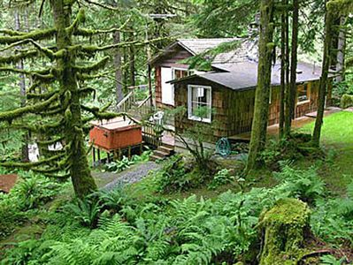 Total seclusion in riverfront forested valley, large view deck above river