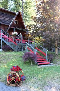 Photo for Sunny Bluff Chalets - Vacation Rental - Wolf Chalet