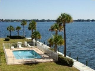Backyard pool by the palms right on the Bay! Fish off 44' pier, Watch dolphins!