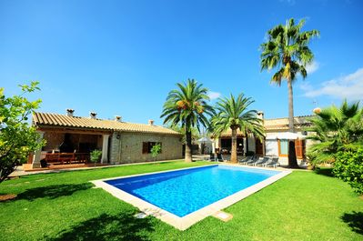 Garden with palm trees and pool