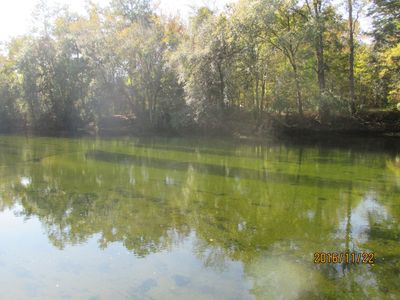 Photo for Beautiful Property On The Santa Fe River